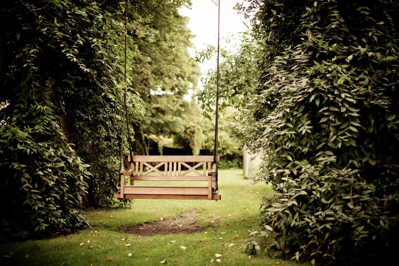Beer garden with swing