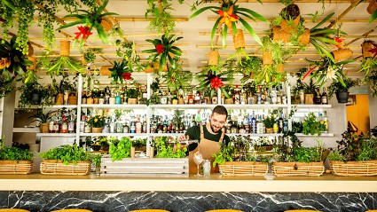 A barman serving drinks at the bar of the Bourne & Hollingsworth Garden Room